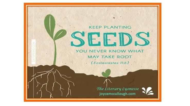 seed image